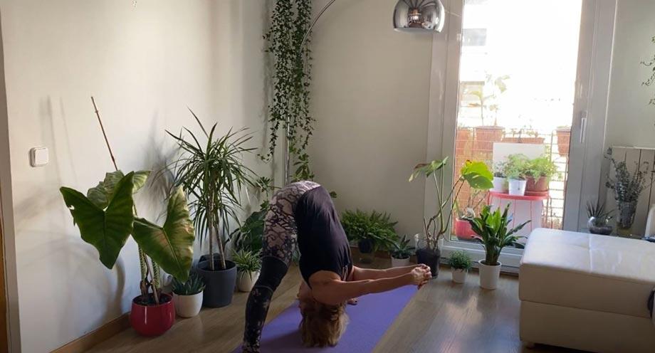 yoga-collartz-8